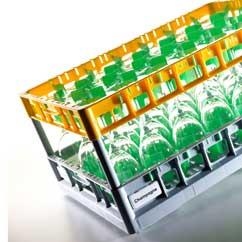 Gläserkorb 600x400 Fries Rack System